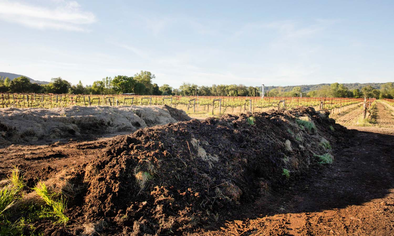 quivira-wines-farming-image-compost