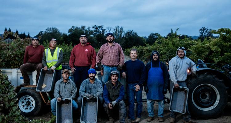 vineyard-crew-1